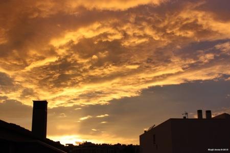 (4) 5 de Noviembre de 2011