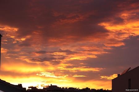 (12) 5 de Noviembre de 2011