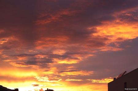 (14) 5 de Noviembre de 2011