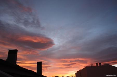 (2) 16 de Diciembre de 2011