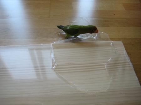 Ahora toca quitar el plastico de los tablones