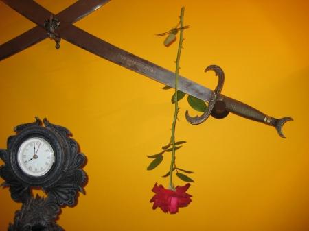 Rosa podada y aun tierna a falta de que se seque el tallo y las hojas. Los petalos se medio volverán a cerrar