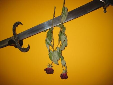 Aunque se vea el tallo y las hojas verdes, la rosa esa seca
